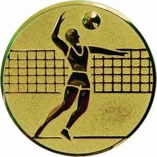 Вкладыш для медали D1-A6/G волейбол (D-25 мм)