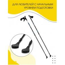 Палки для скандинавской ходьбы Ergo, 110-140 см
