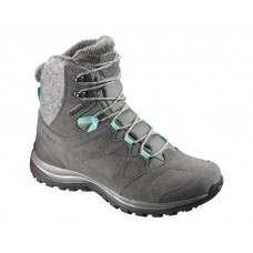 Ботинки Salomon ELLIPSE WINTER GTX W